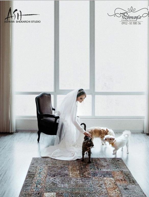 مراسم عروسی پیمان قاسم خانی و همسرش