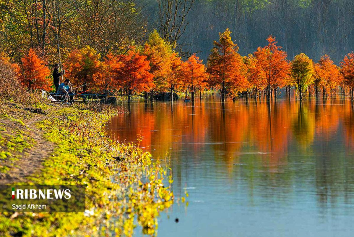 پاییز زیبای دریاچه الندان ساری
