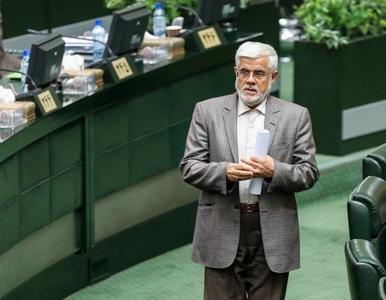 محمدرضا عارف 5