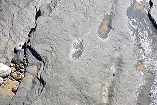 ردپای ۹۵۰هزار ساله انسان